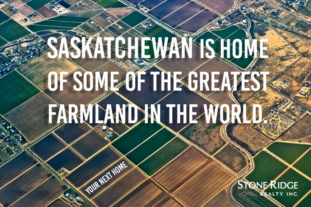 Farmland in Saskatchewan for sale